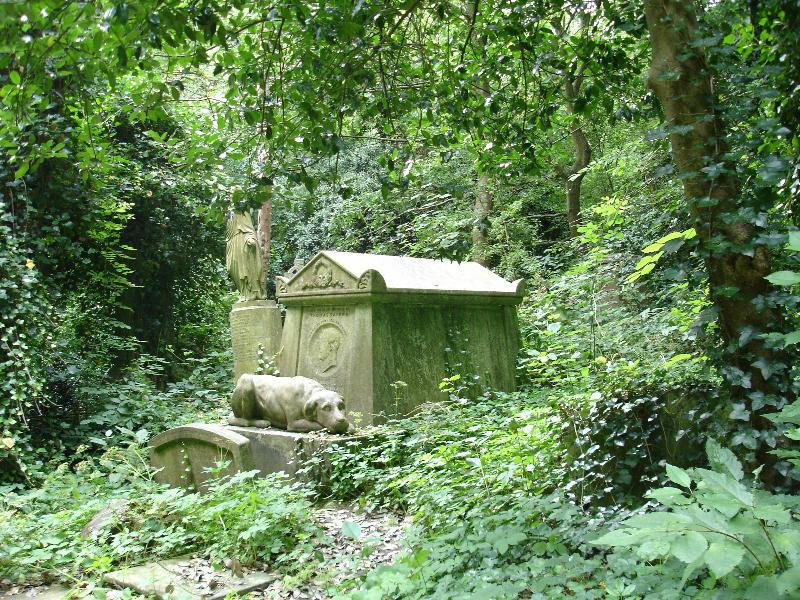 Необычные экскурсии по кладбищам (13)