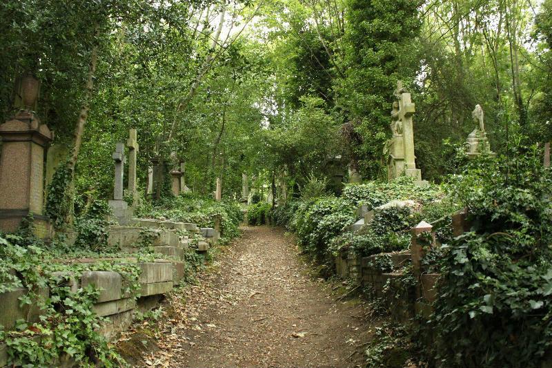 Необычные экскурсии по кладбищам (2)