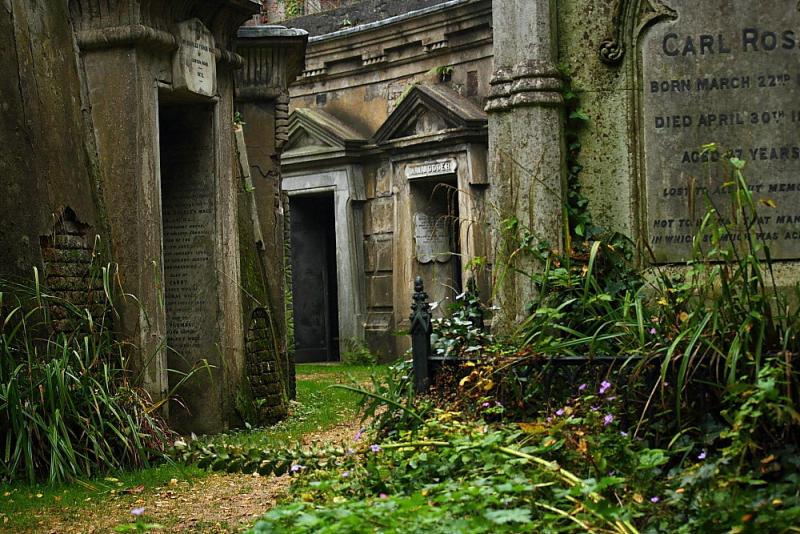 Необычные экскурсии по кладбищам (8)