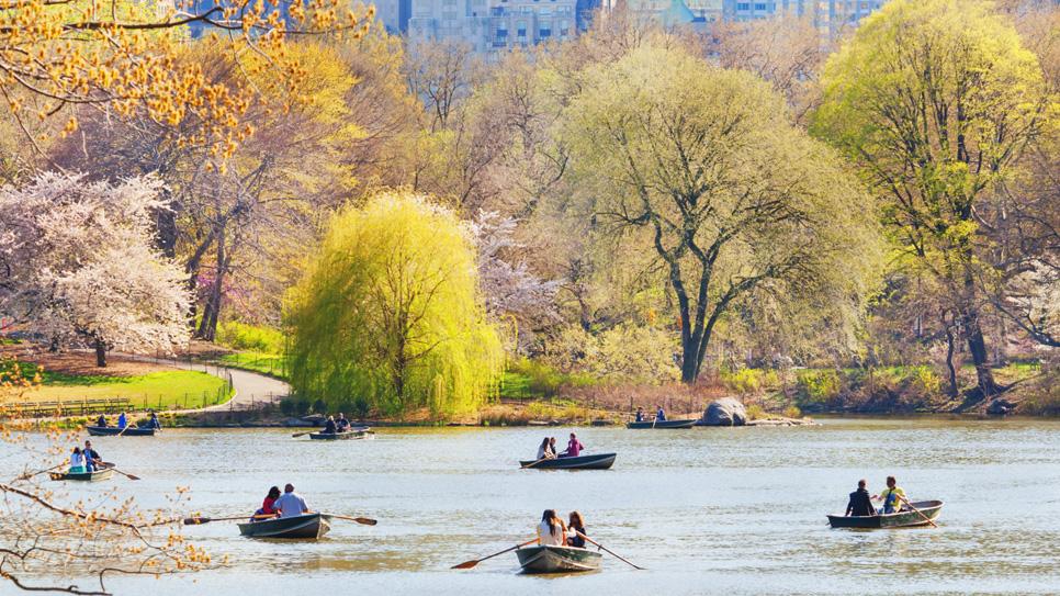 Весна в центральном парке Нью-Йорка (14)