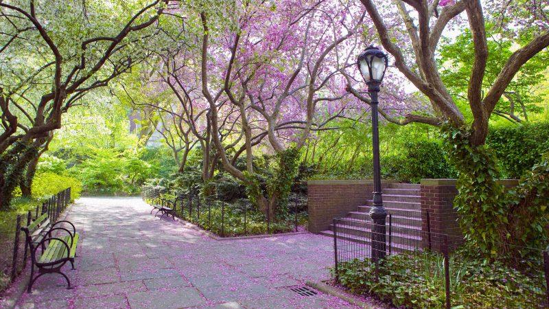 Весна в центральном парке Нью-Йорка (13)