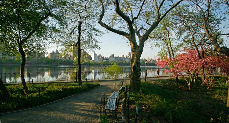 Весна в центральном парке Нью-Йорка (2)