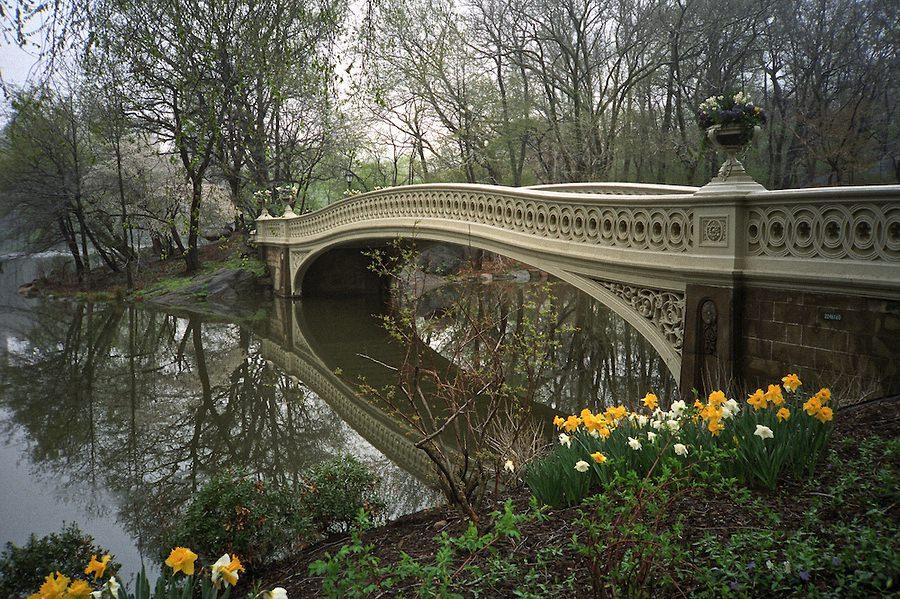 Весна в центральном парке Нью-Йорка (12)