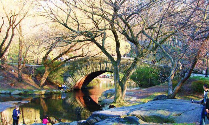 Весна в центральном парке Нью-Йорка (11)