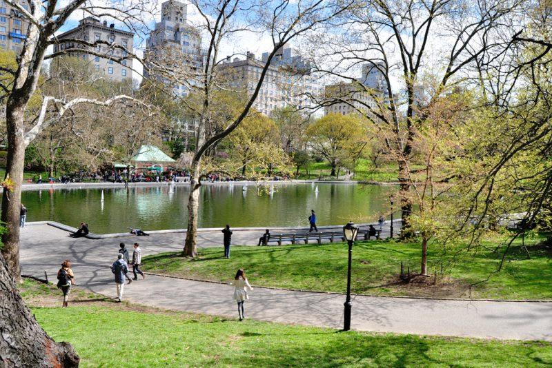 Весна в центральном парке Нью-Йорка (10)