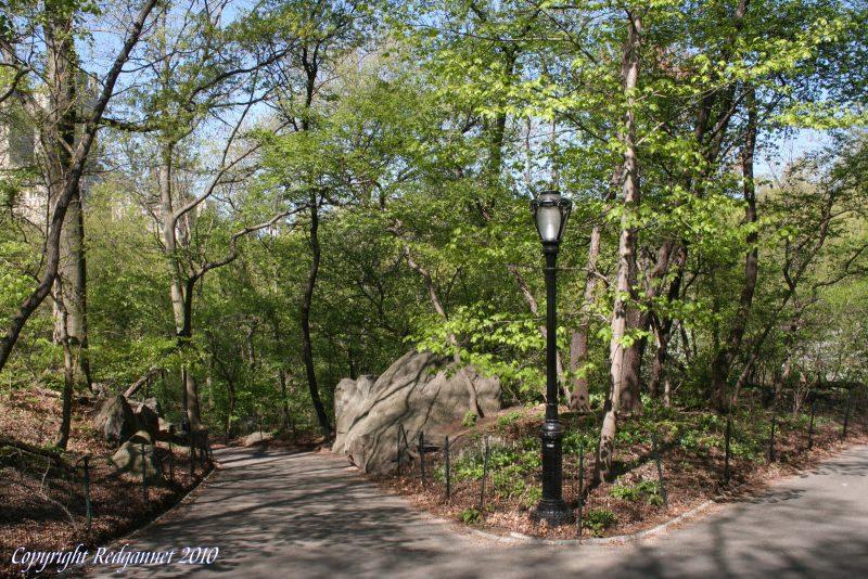 Весна в центральном парке Нью-Йорка (7)