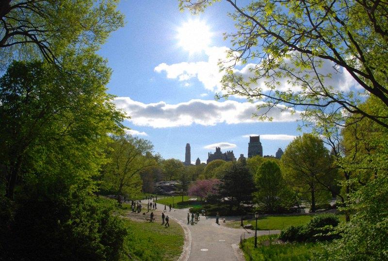 Весна в центральном парке Нью-Йорка (6)