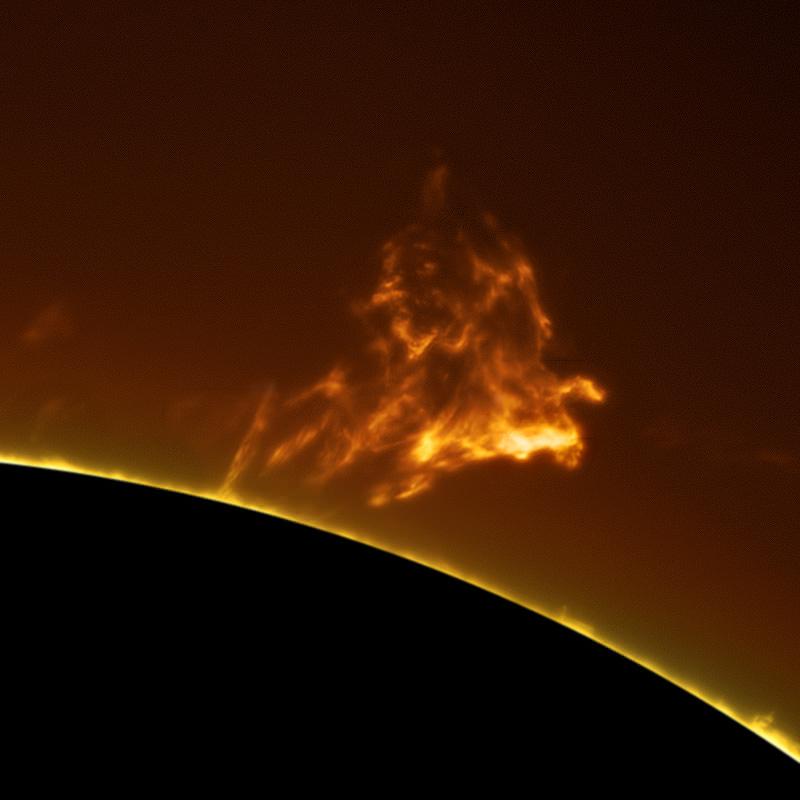 Фотографии Солнца от Алана Фридмана (3)