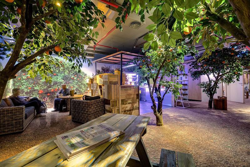 Креативный офис от Google в Тель-Авиве (3)