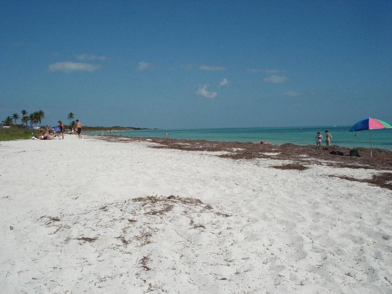 Уединенные пляжи фото (5)