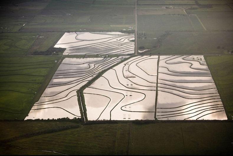 Воздушные фотографии сельскохозяйственных угодий (10)