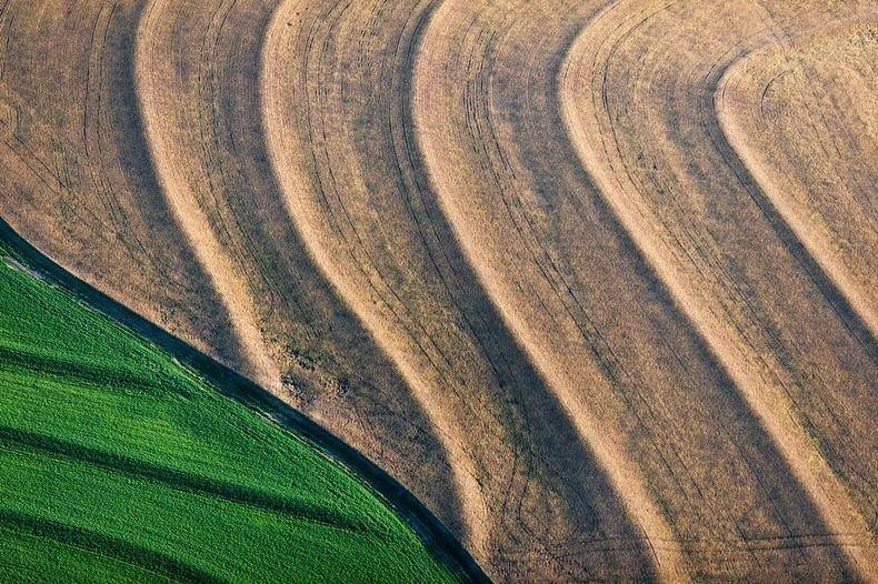 Воздушные фотографии сельскохозяйственных угодий (14)