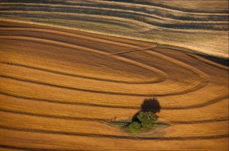 Воздушные фотографии сельскохозяйственных угодий (15)