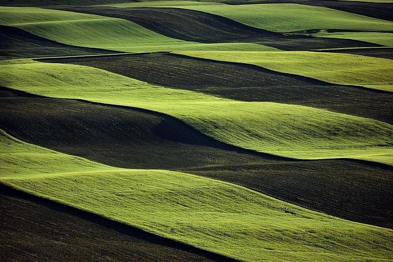 Воздушные фотографии сельскохозяйственных угодий (17)