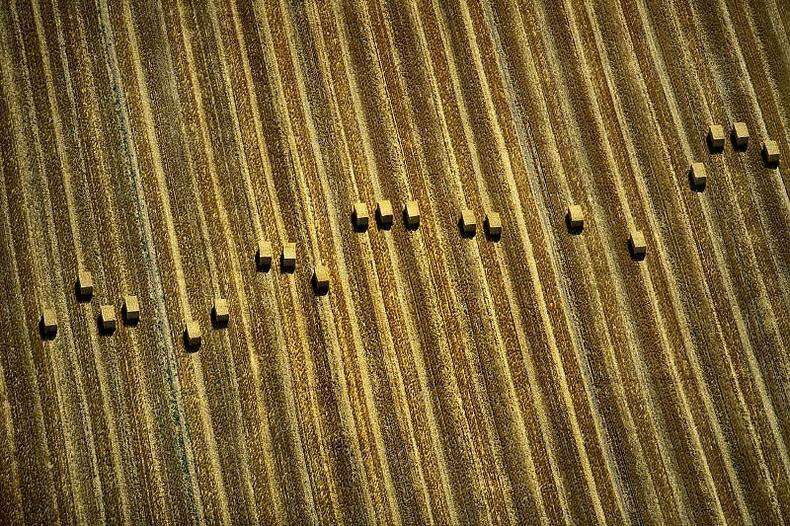 Воздушные фотографии сельскохозяйственных угодий (18)