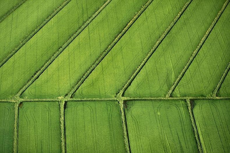 Воздушные фотографии сельскохозяйственных угодий (19)