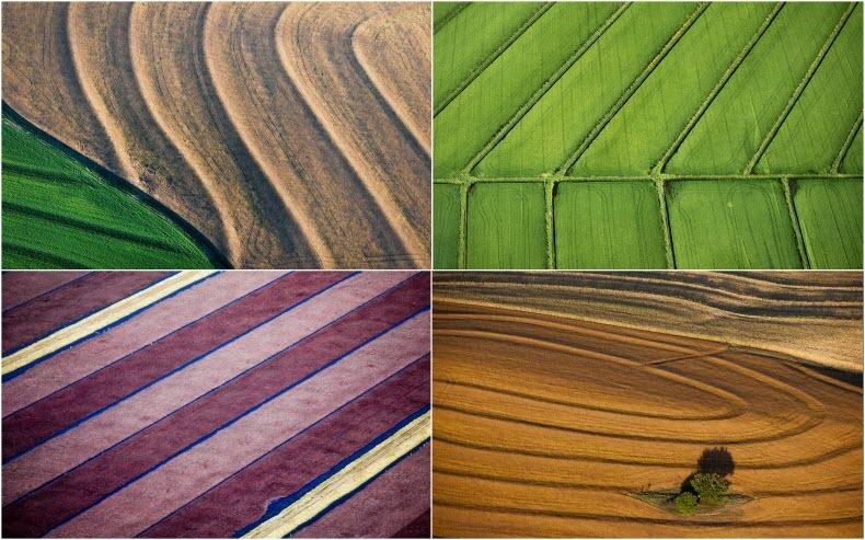 Воздушные фотографии сельскохозяйственных угодий (1)