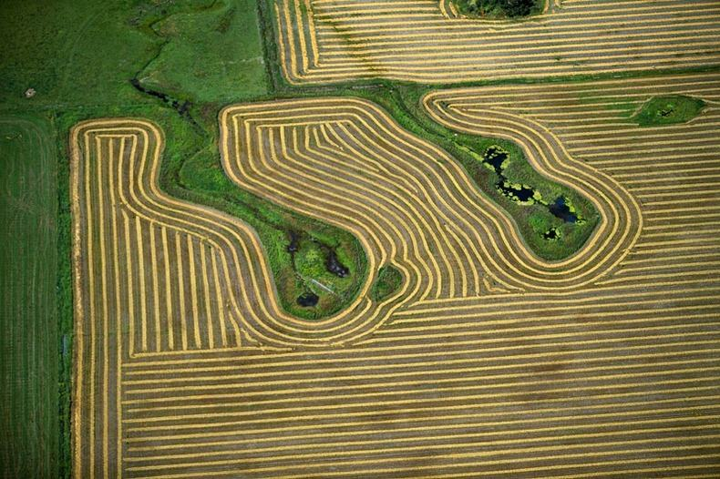 Воздушные фотографии сельскохозяйственных угодий (20)