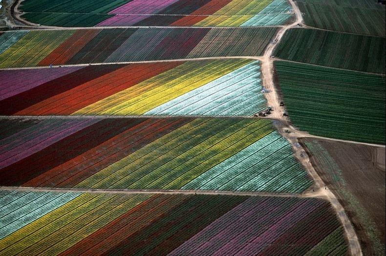 Воздушные фотографии сельскохозяйственных угодий (2)