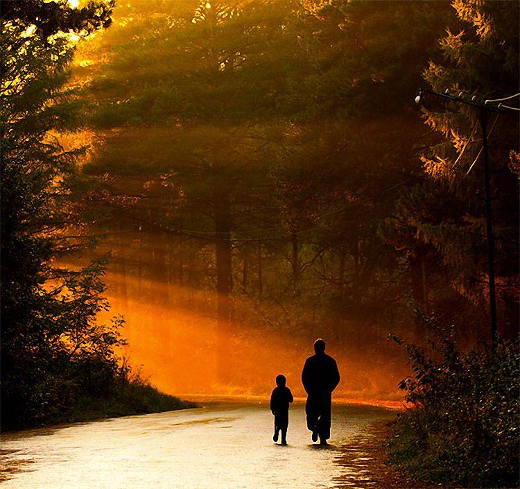 Отцы и дети (5)
