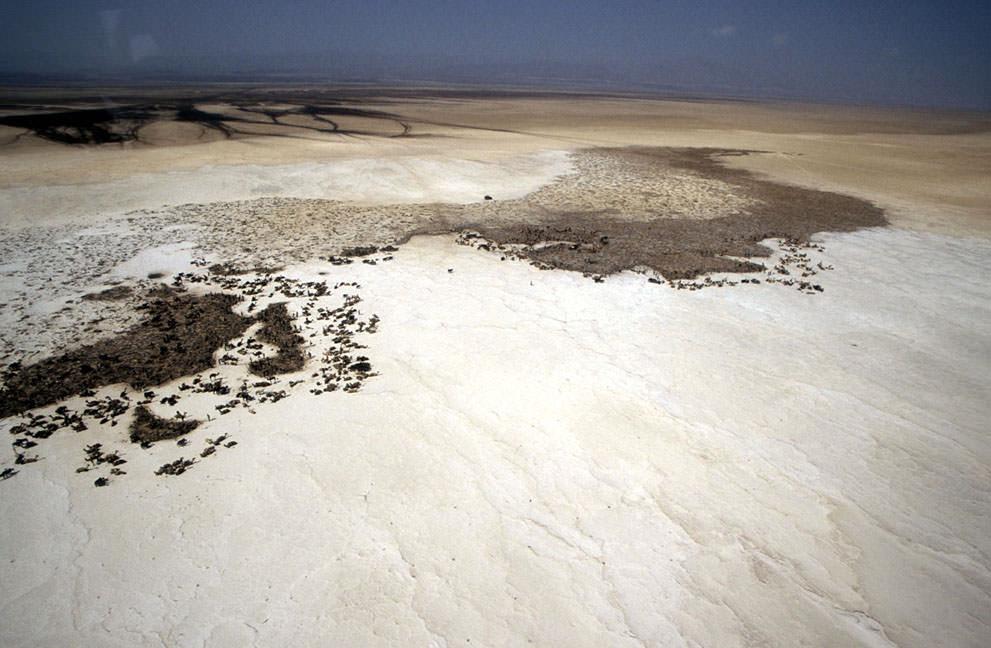 Соляные шахты (13)