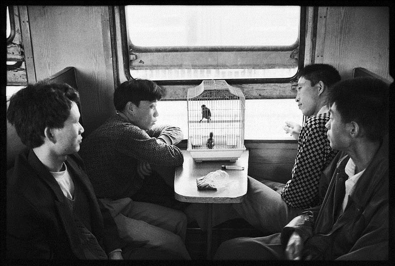 Жизнь на железной дороге в фотографиях Ван Фучуна (Wang Fuchun) (2)