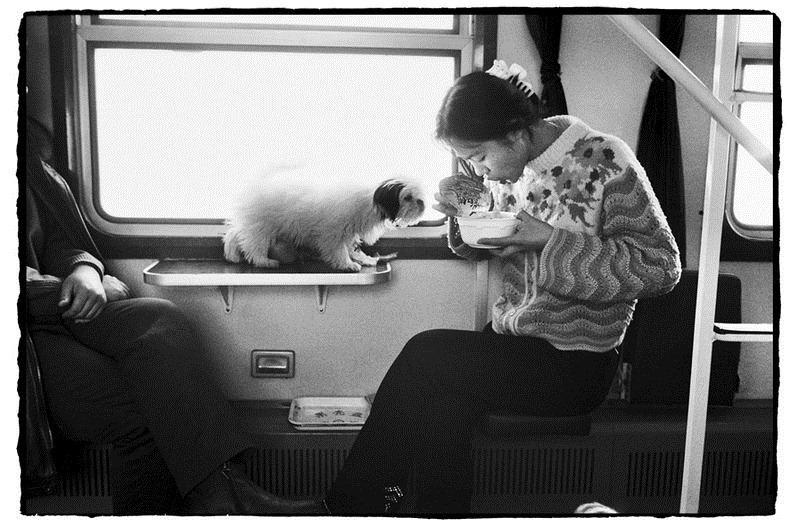 Жизнь на железной дороге в фотографиях Ван Фучуна (Wang Fuchun) (24)
