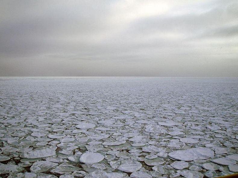 Ледяной блин (4)