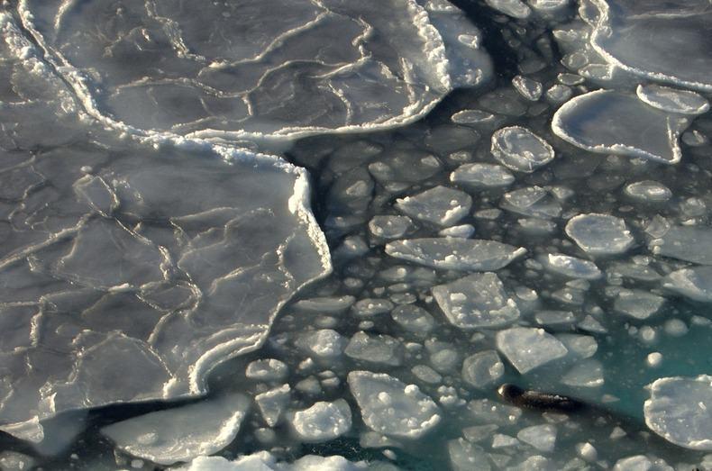 Ледяной блин (6)